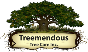 Treemendous Tree Care Logo