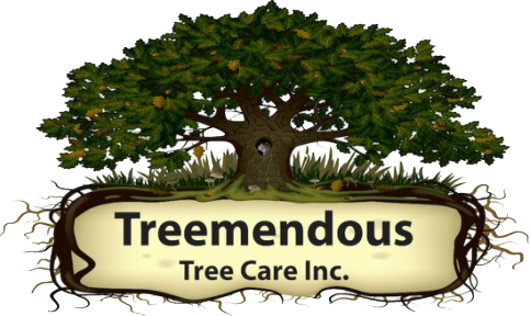 Tree Services in Wilmington Delaware by Treemendous