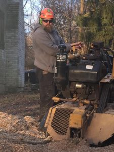 stump grinding West Vincent