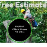contact us - tree services de