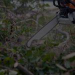 Debris Cleanup in Delaware