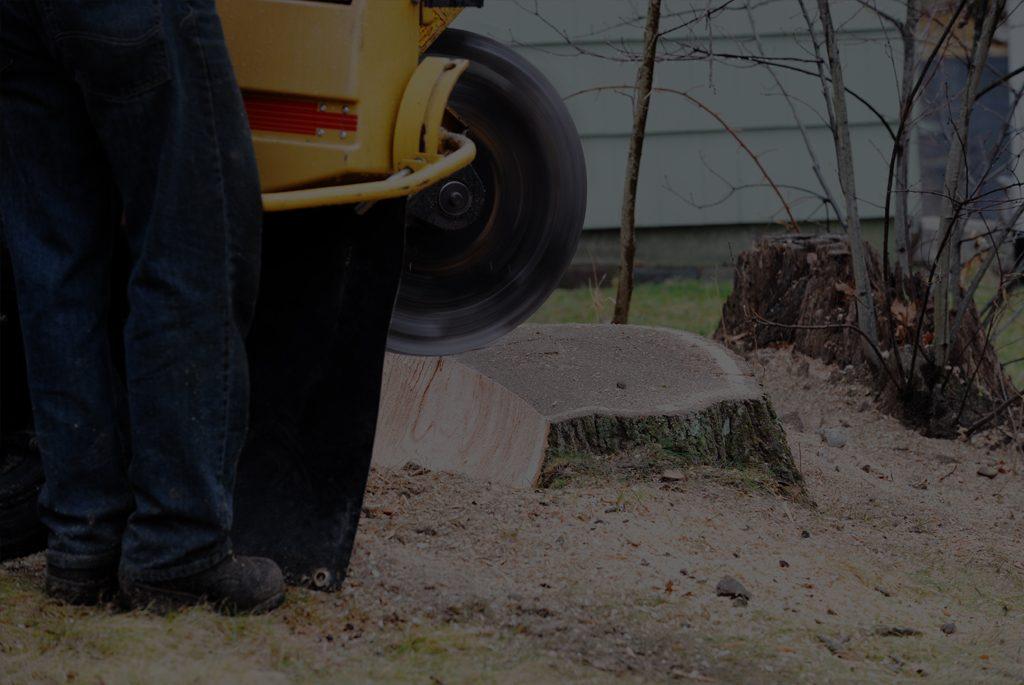 Stump Grinding in Delaware