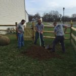 planting trees by Tree Services DE