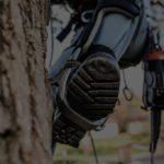 Tree Services Delaware
